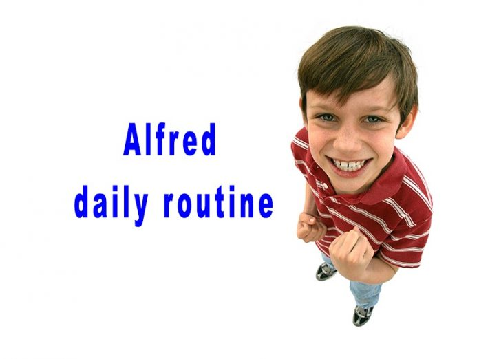 Alfred daily routine
